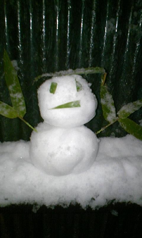 雪やー!!!!
